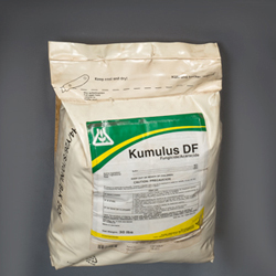Micronized Sulfur Fungicide/Miticide (Acoidal or Microthiol Brands)
